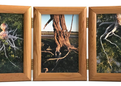 Untitled Triptych © Scott Dietz
